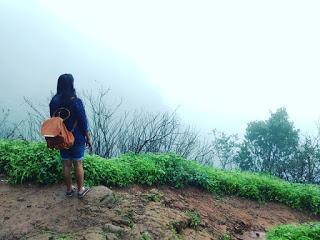 amidst mist and fog